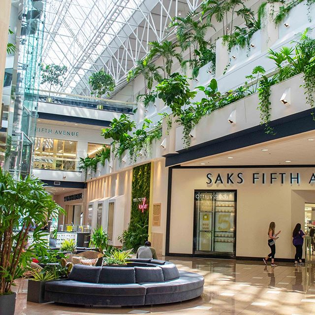 🌿✨ Have you seen Canal Place lately? In addition to the moss wall that's become a photo icon, we grow hundreds of plants in this luxe space. 🌵Strategic design and lots of nurturing has evolved this shopping experience into an interior botanical garden. @canalplacestyle . . . We are thrilled to debut our latest botanical exhibition tonight for Research for the Cure @lacancerresearch - see our stories for more info 🌱 . . 🌿Stay tuned for sneak peaks of the space, and more info on how you can experience #biophilia in the heart of the city 🌿 #lunalandmark . . . #lunabotanicals #biophilicdesigner #biophilicdesign #greendesign #interiordesign #publicspaces #neworleansartist #neworleansart #experienceneworleans #exploreneworleans #biophilicdesign #biophilicelements #minimaldesign #naturalelements #naturaldesign #indoorplants #indoorplantstyling #plantsofinstagram #houseplantjournal #decoratingwithplants #plantcollection #plantcollector #stellarspaces #indoorjungle #jungalowstyle #urbanjungles #plantbased