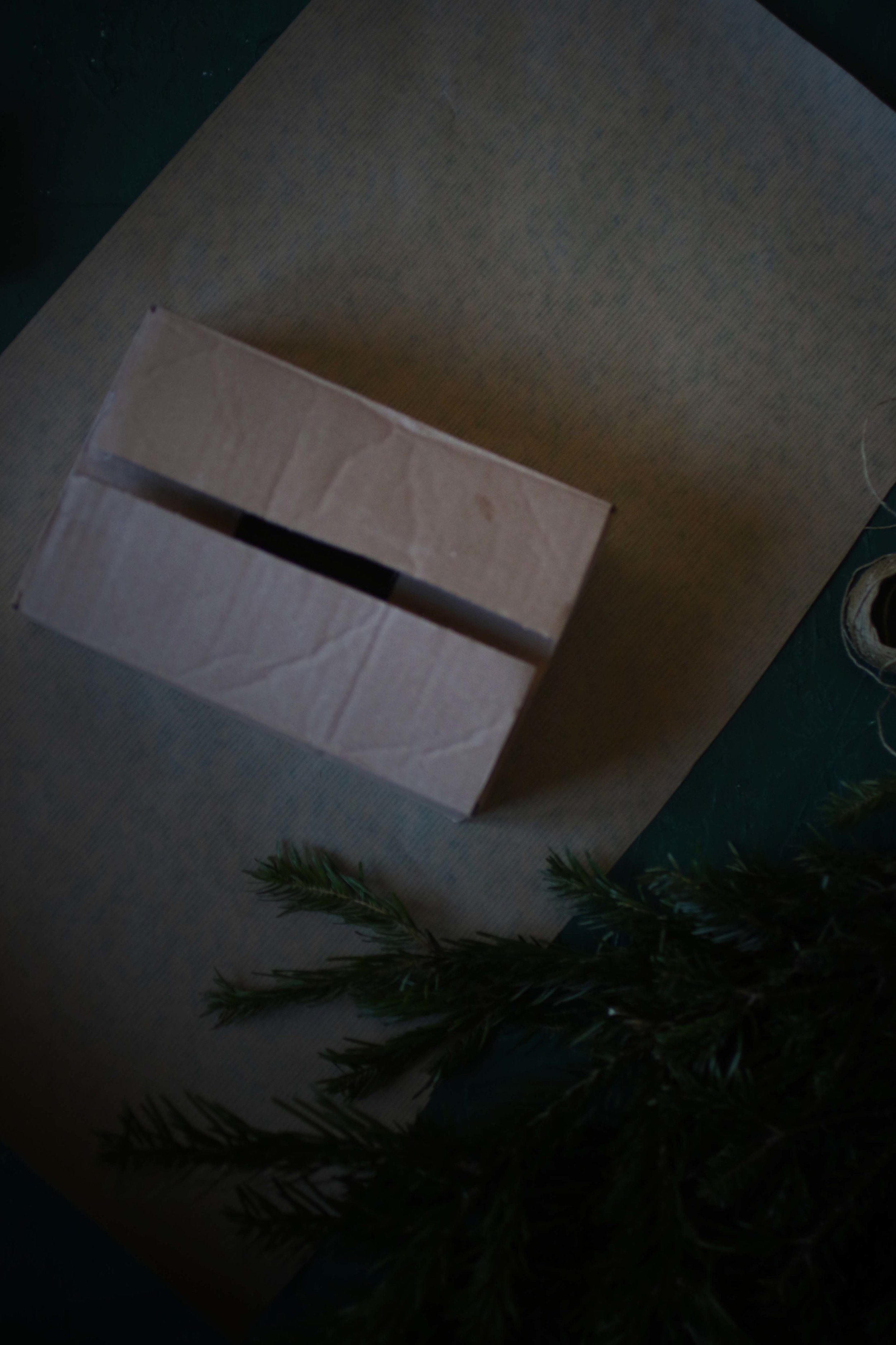 Chrismas gift wrap.jpg