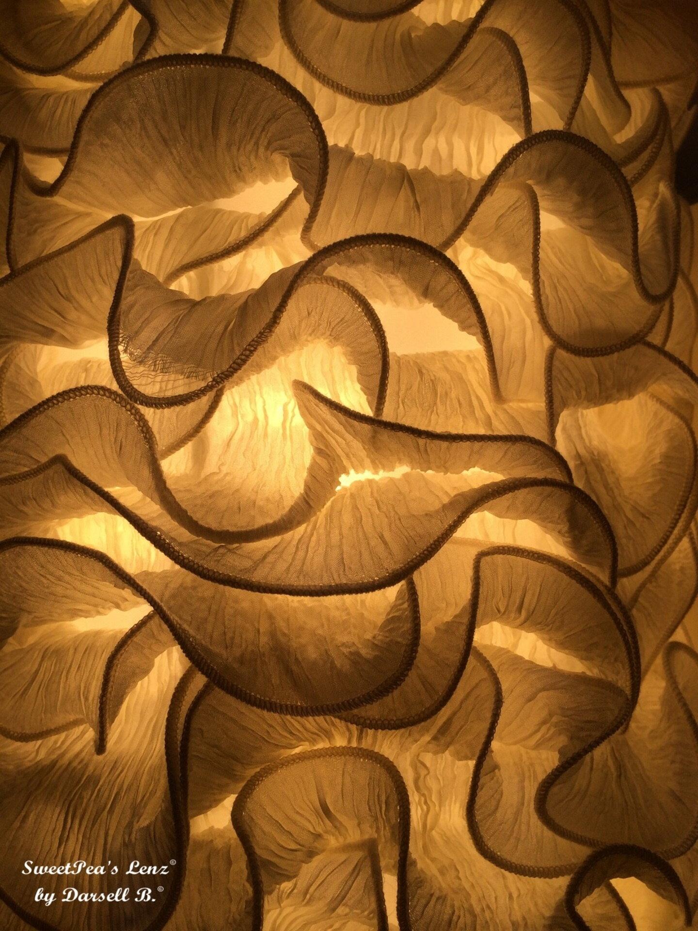 Darsell Brittingham SweetPeas Lenz by DarsellB - Golden Waves S2.JPG