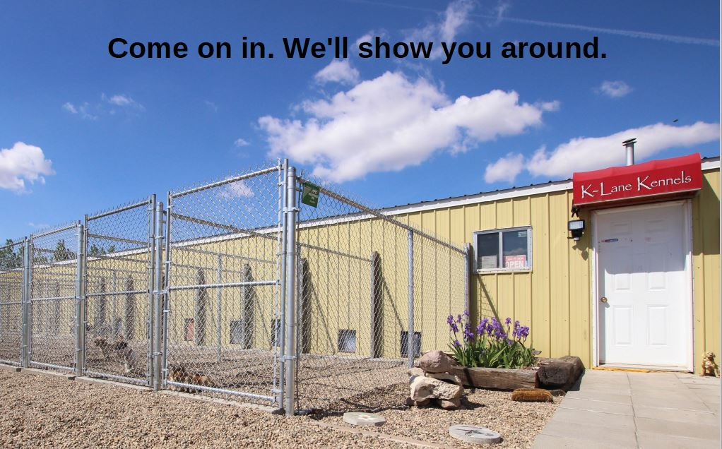 Come In to KLane Kennels.JPG