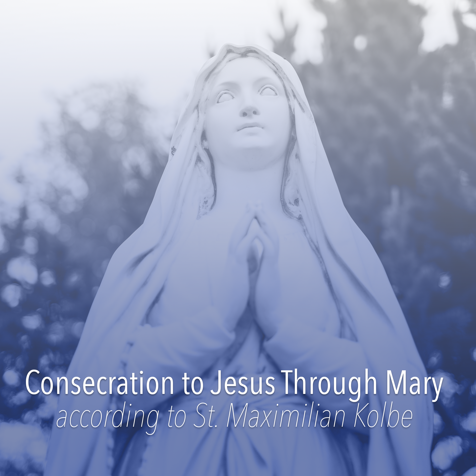 Button-Marian-Consecration.png
