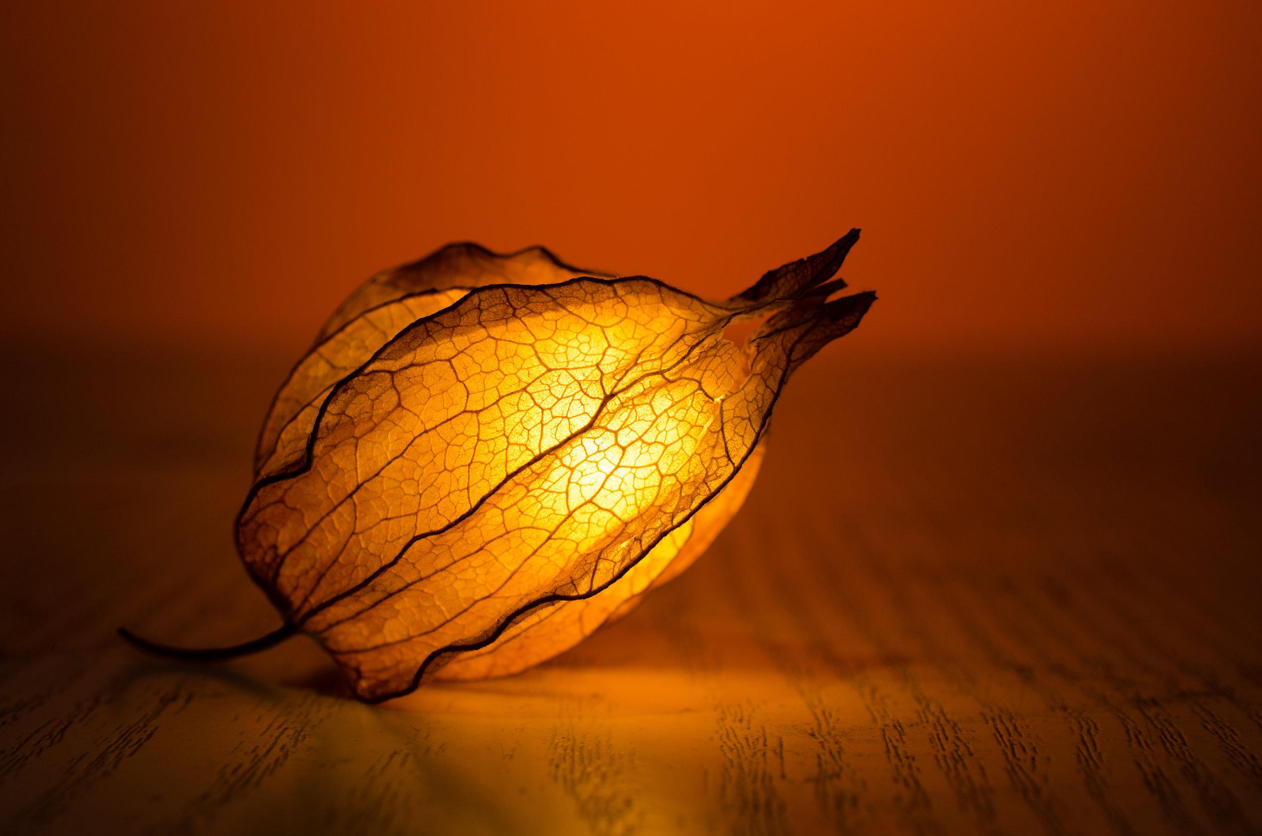 glow_lantern.jpeg