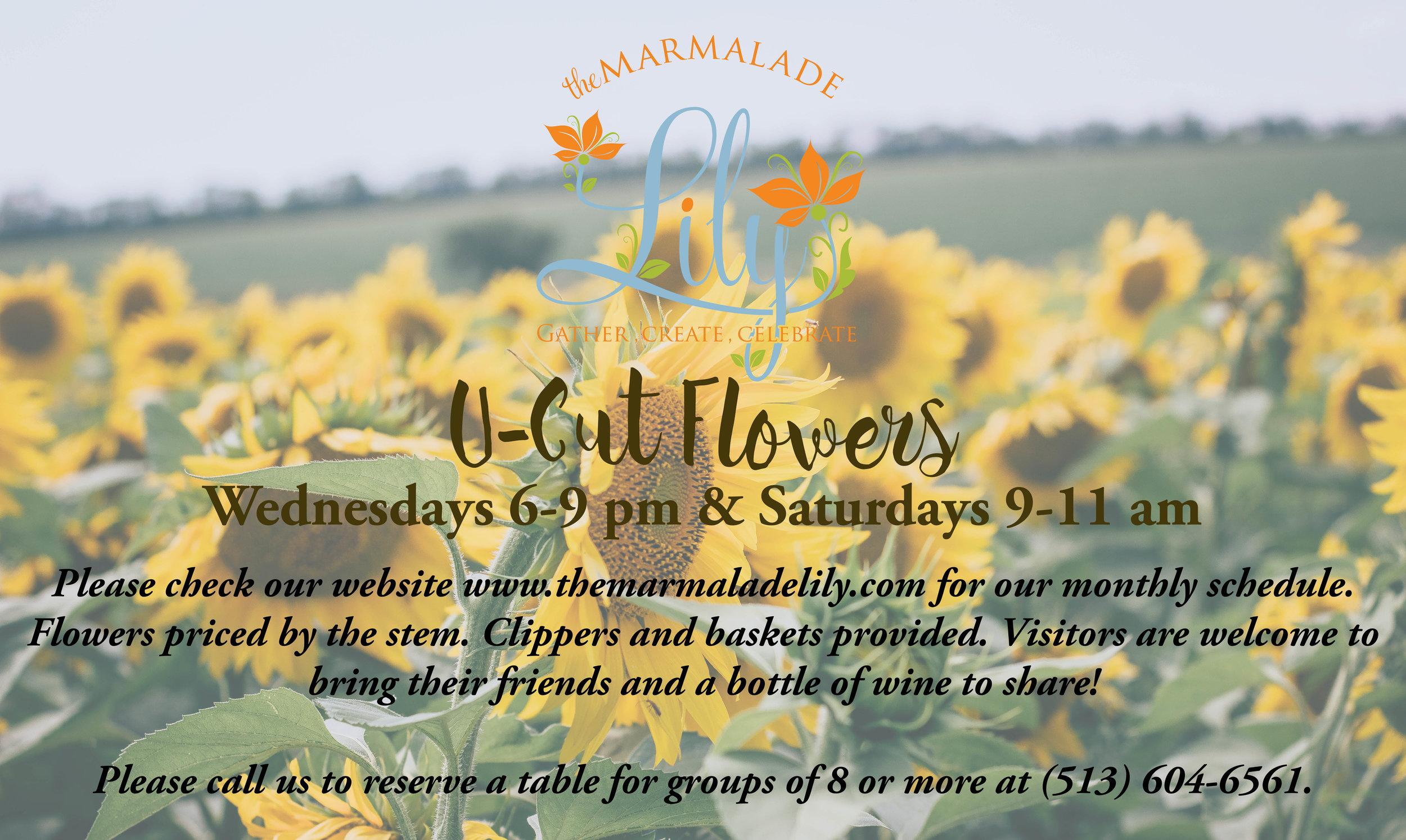 U-Cut Flower The Marmalade Lily Cincinnati, OH