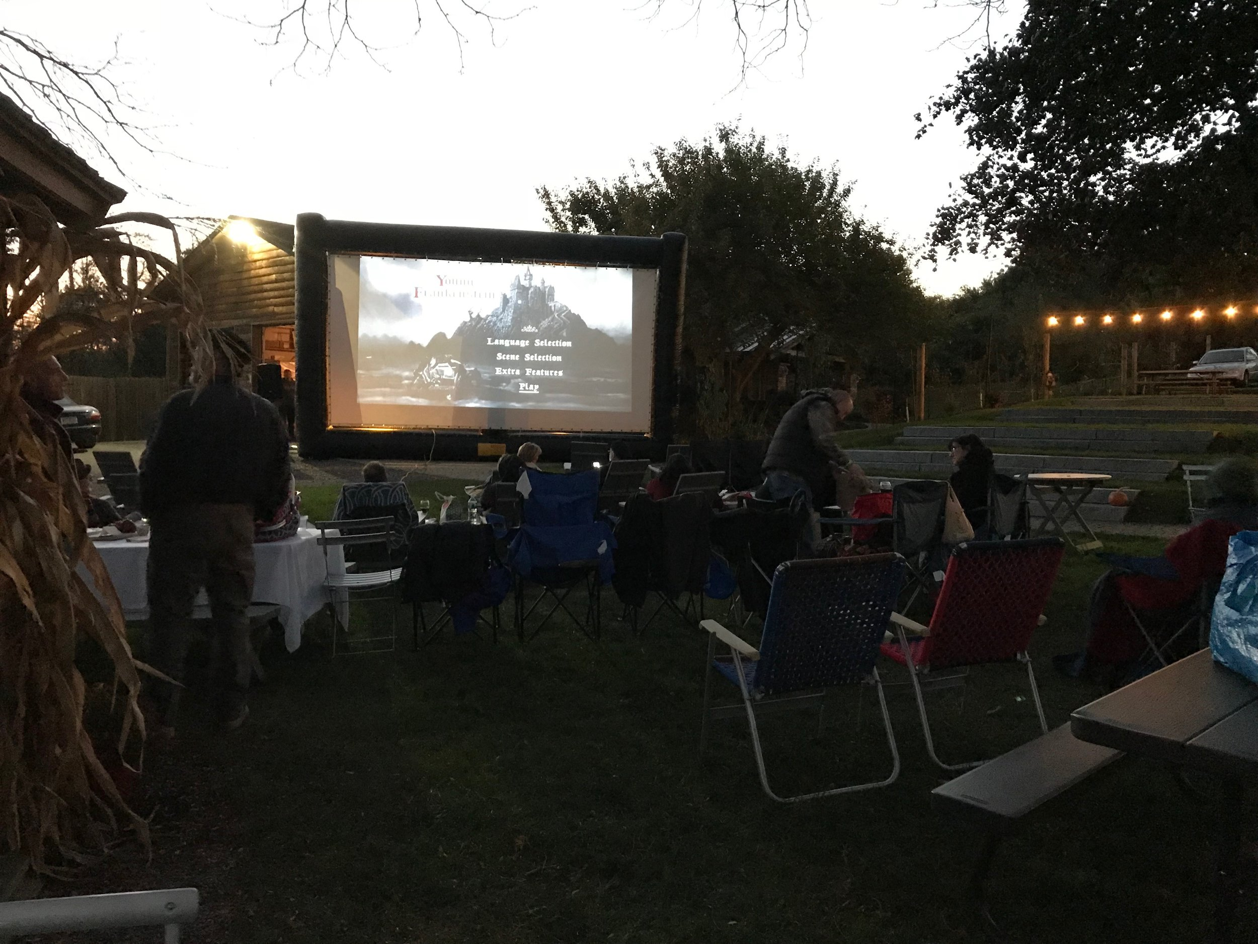 From backyard gatherings to community events, let our team help you customize a festive movie night.