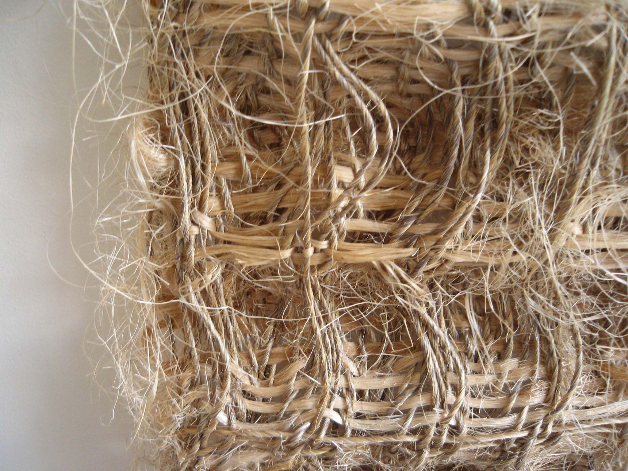 Fieldnotes, Hiroko Takeda, 2007, NY Studio, 59%22h x 28%22w, mixed natural fibers.jpg