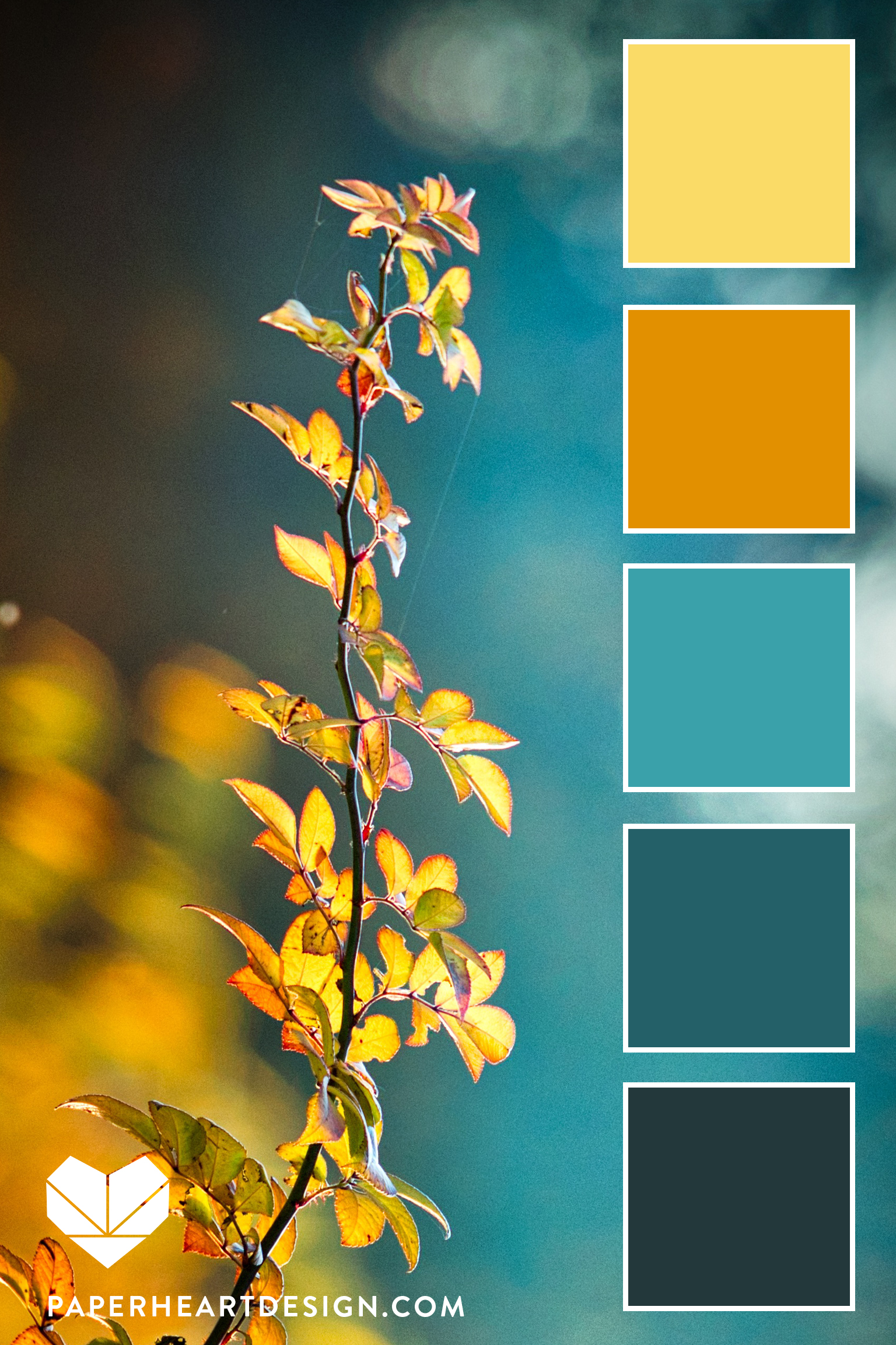 Teal is a color often overlooked in autumn, but it's there and it's fantastic!