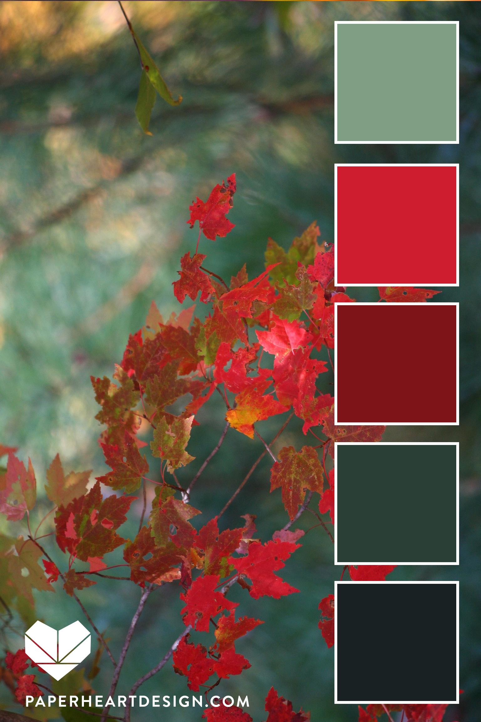 Deep greens + deep reds make for a rich, combination.