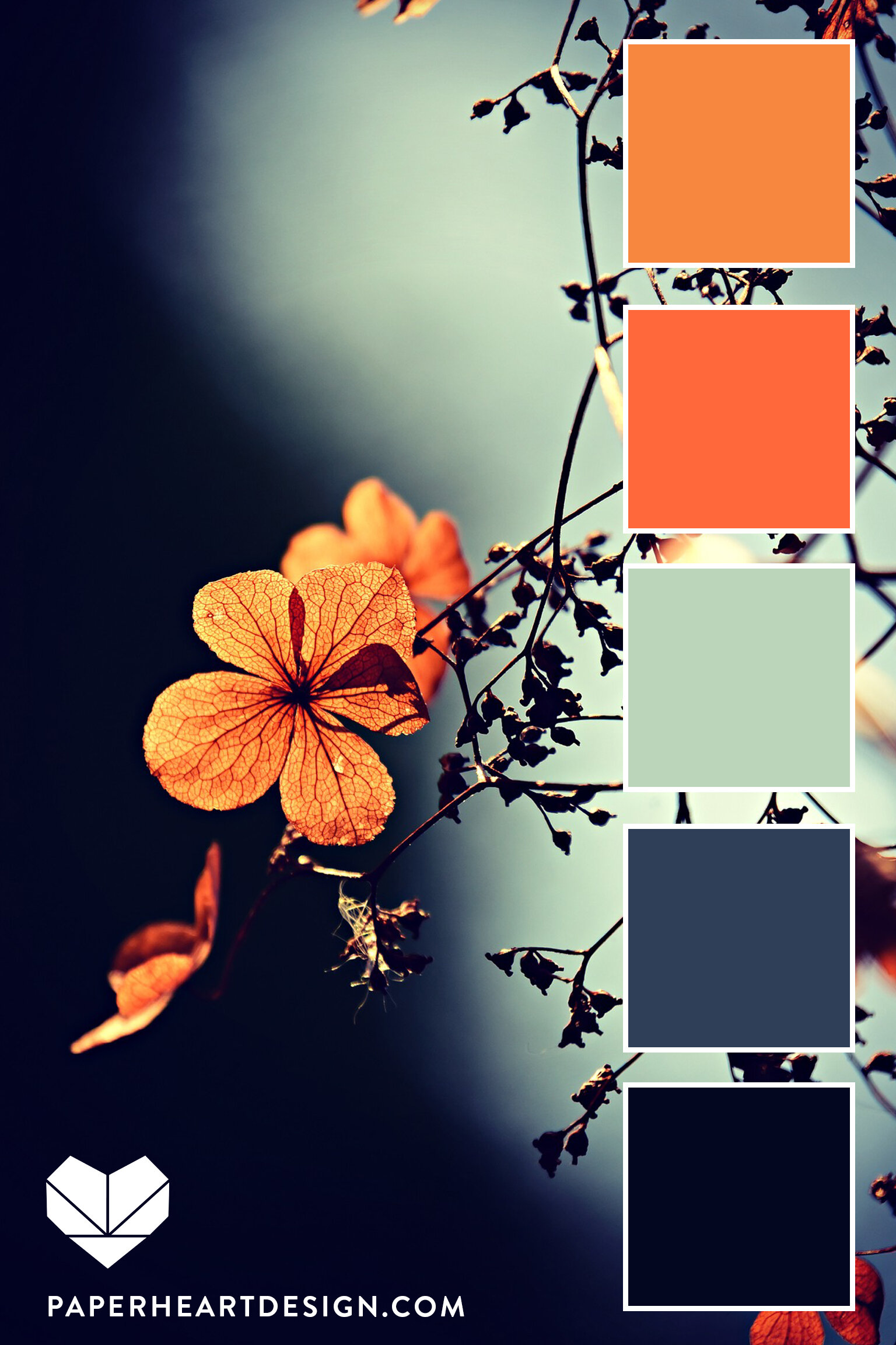 Coral, Orange, Mint, and Gray-Blue with Navy create a dramatic contrast.