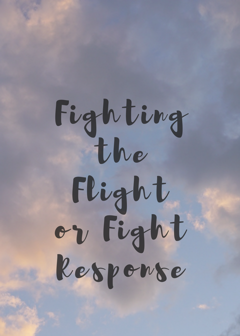 Tips for Flight or Flight Response