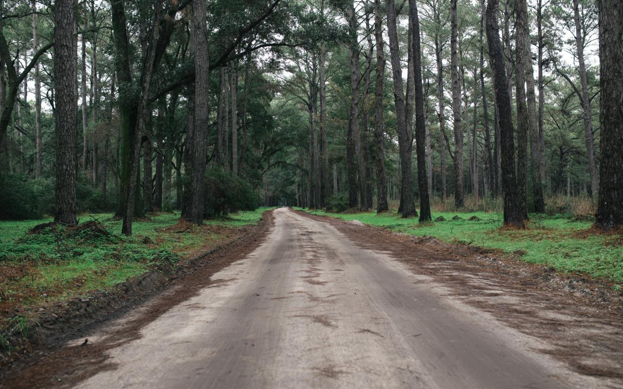 road to: botany bay, sc