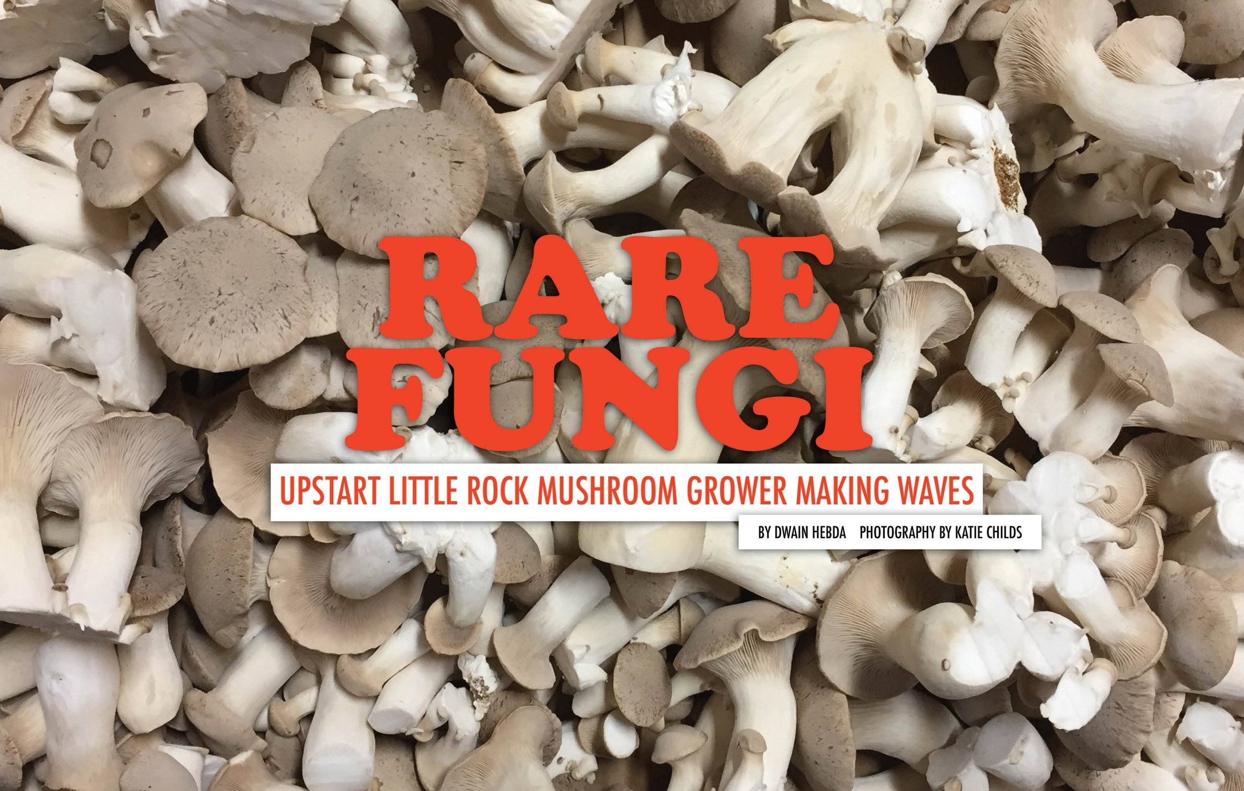 Rare Fungi — Arkansas Food & Farm
