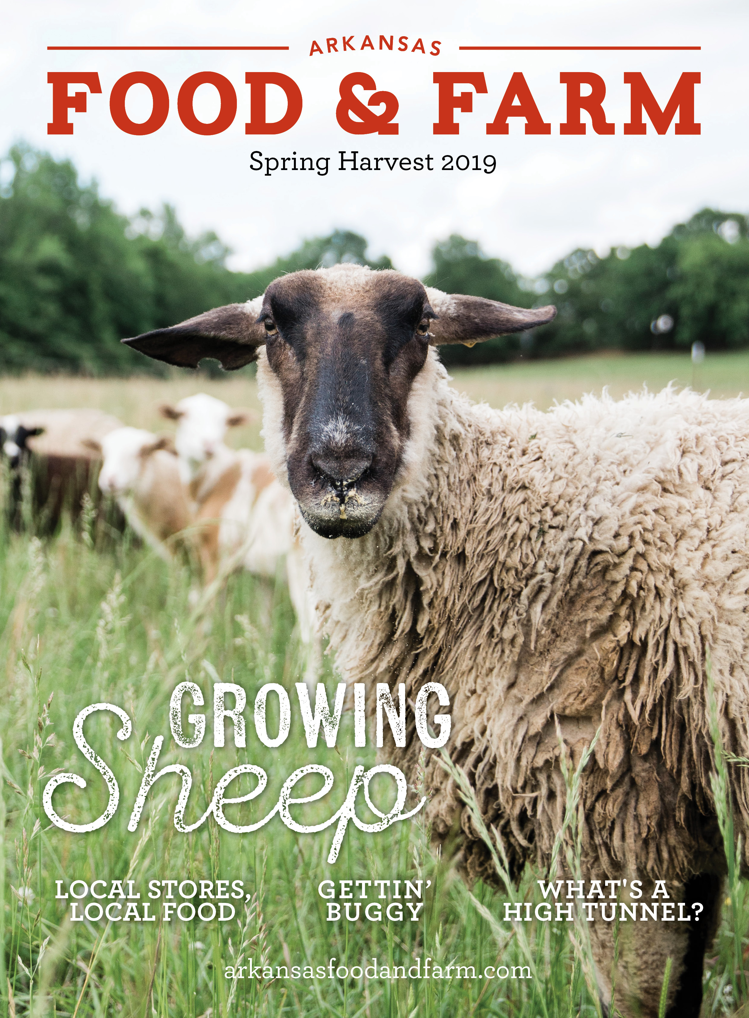 F&F 2019 Spring Cover.jpg