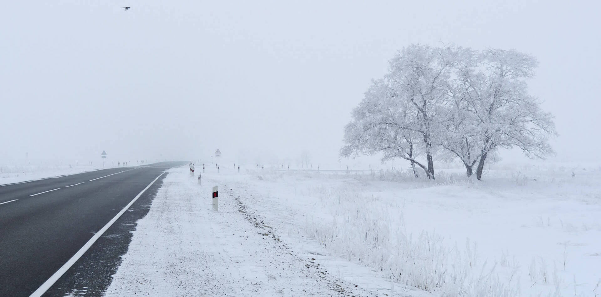 winter-landscapes.jpg
