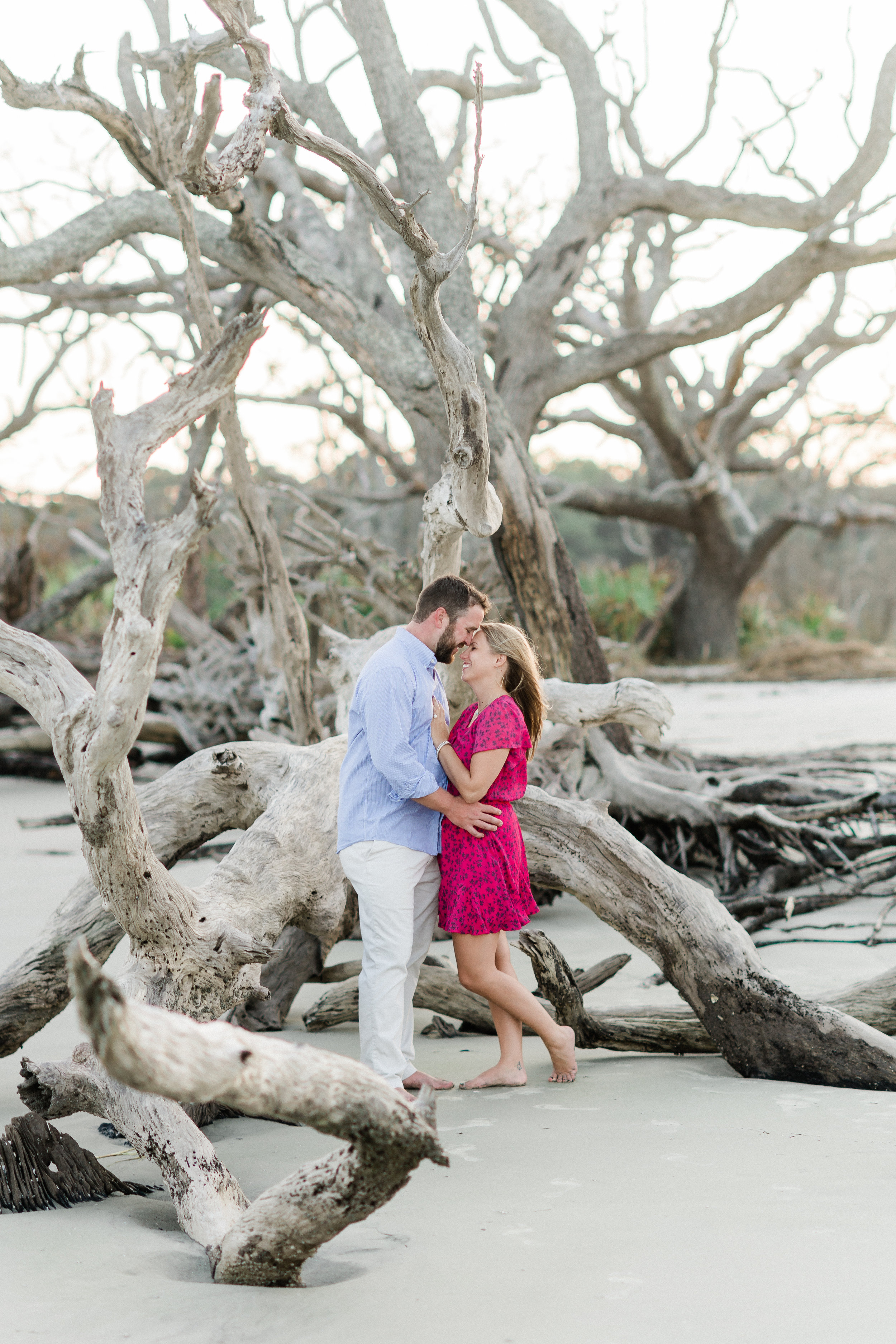 driftwood beach engagement pictures