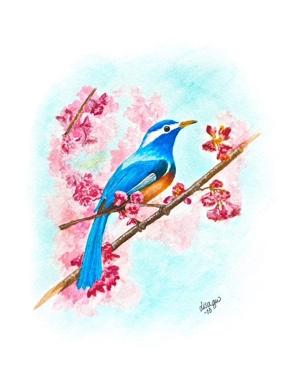springbird_1000px.jpg