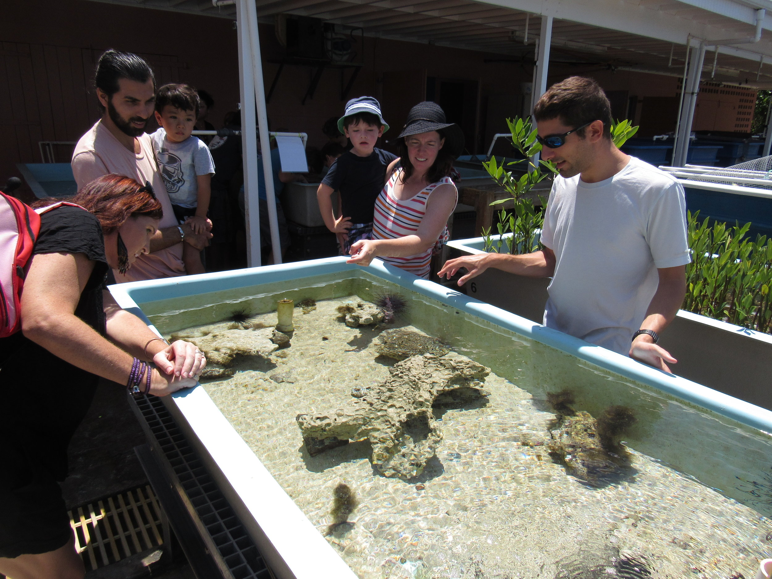 MMES Candidate John Cassell discusses marine life at the touch tank.