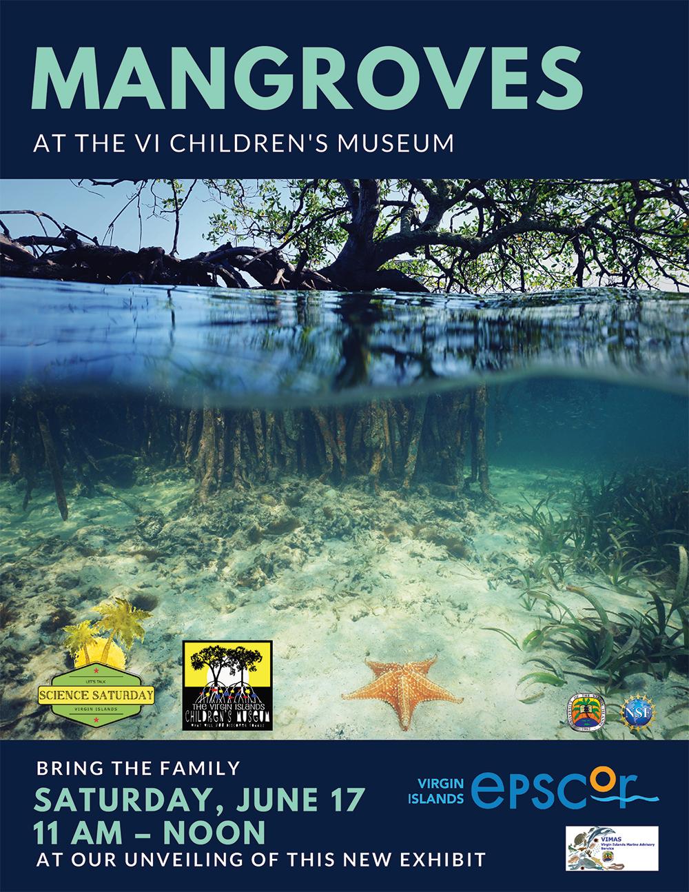 Mangroves Flyer-3.jpg