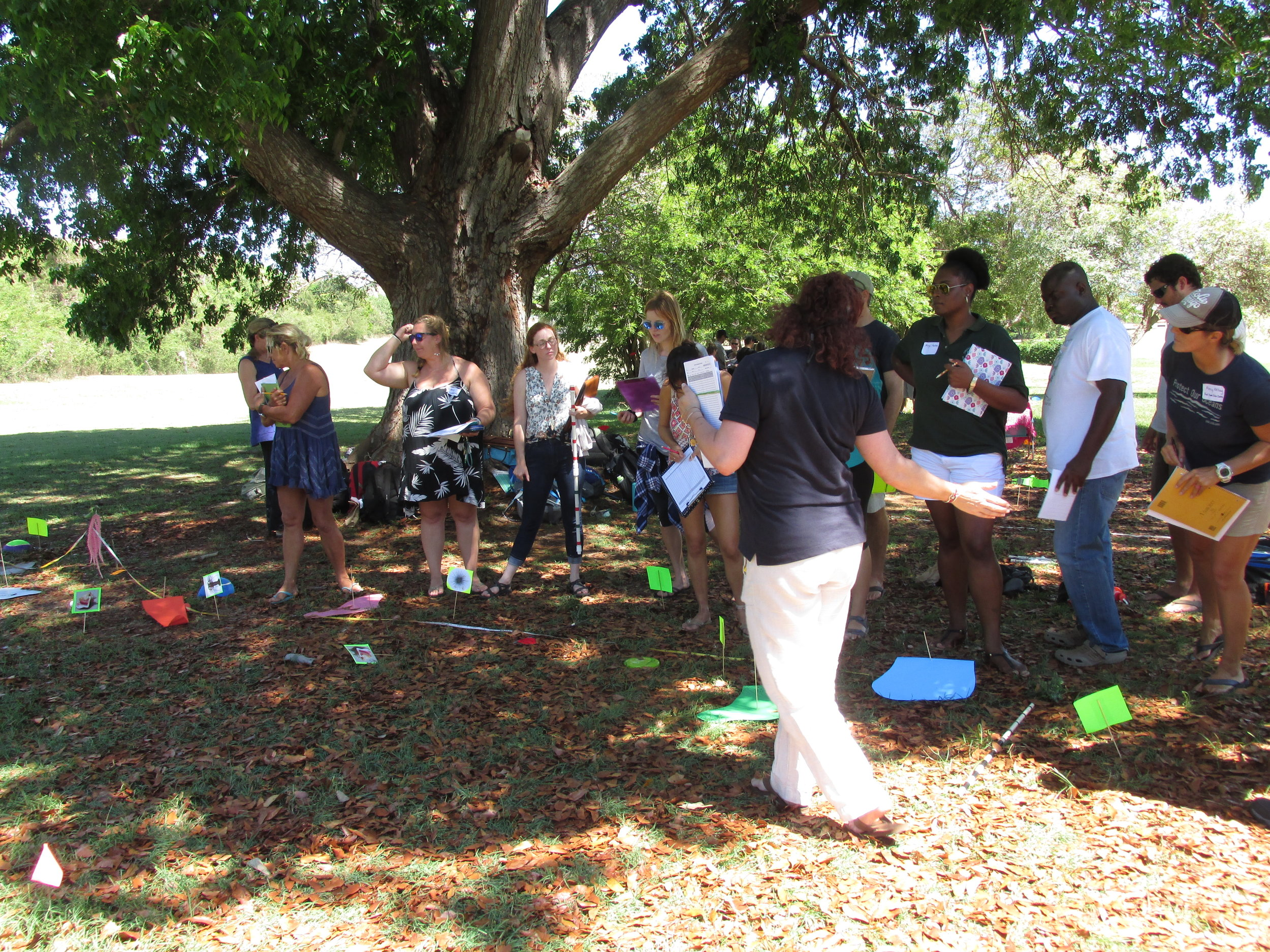 To participate in the NCRMP surveys, UVI staff and students participated in rigorous training in the fish and coral assessment protocols. Dr. Brandt has contributed to the development of the protocols and has helped lead NCRMP efforts in the territory since 2012.