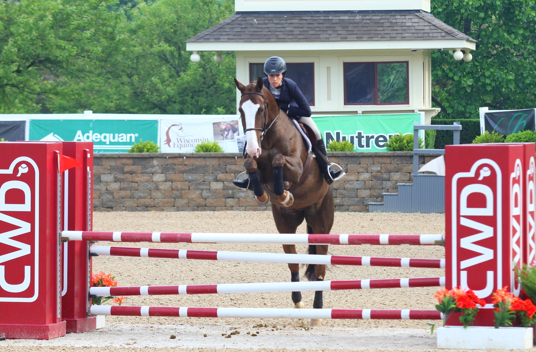 WIHS Jumper Phase  Gia Gulino won the WIHS Classic Jumper Phase aboardher own Armada.
