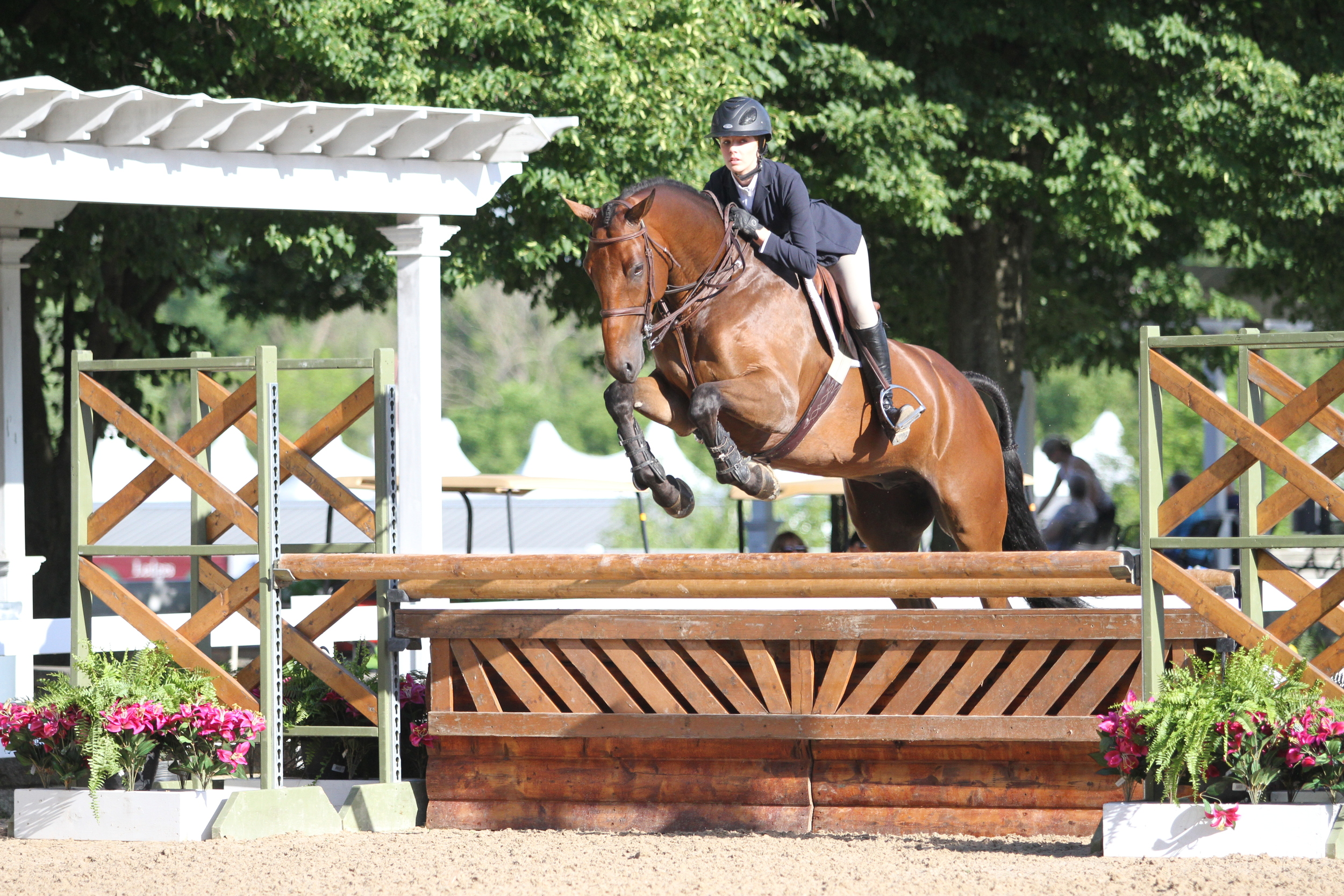 """USEF/Pessoa Hunt Seat Medal    Claire McKean took the equitation medal with Quintus Rubin, owned by North Run.   He really just put all the parts together today,"""" said McKean of the six-year-old hunter. """"He jumped really well, so I was really proud of him. For him, the counter cantering was a challenge. He doesn't understand that quite yet, but he has the most comfortable canter and the sweetest personality."""" The pair came to compete from Houston, Texas."""