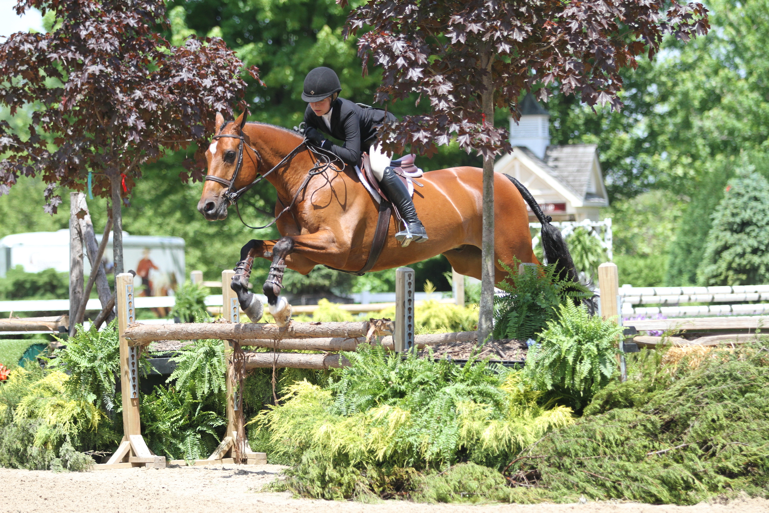 """NCEA Hunter Seat 3'3"""" Junior Medal    Charlotte Novy grabbed the top spot in the NCEA Hunter Seat 3'3"""" Junior Medal equitation class with her horse Cimberly."""