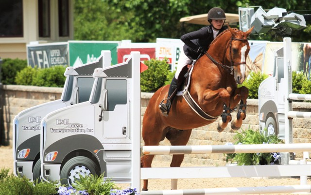 USEF Talent Search Medal   Giavanna Rinaldi and Werner owned by Abigail Vincent