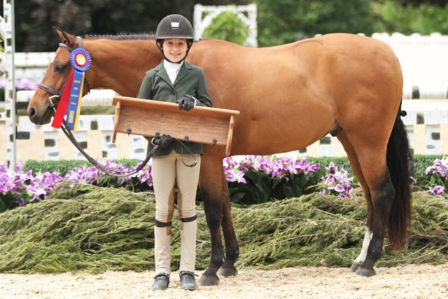 Medium Pony Division Champion    Magical Diamond owned by Strawberry Hill LLC and ridden by Saylor Shea