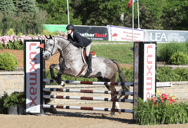 Rebecca Kozma and Corochino Z , owned by Perfecta Farm  Washington Equitation Jumper Phase