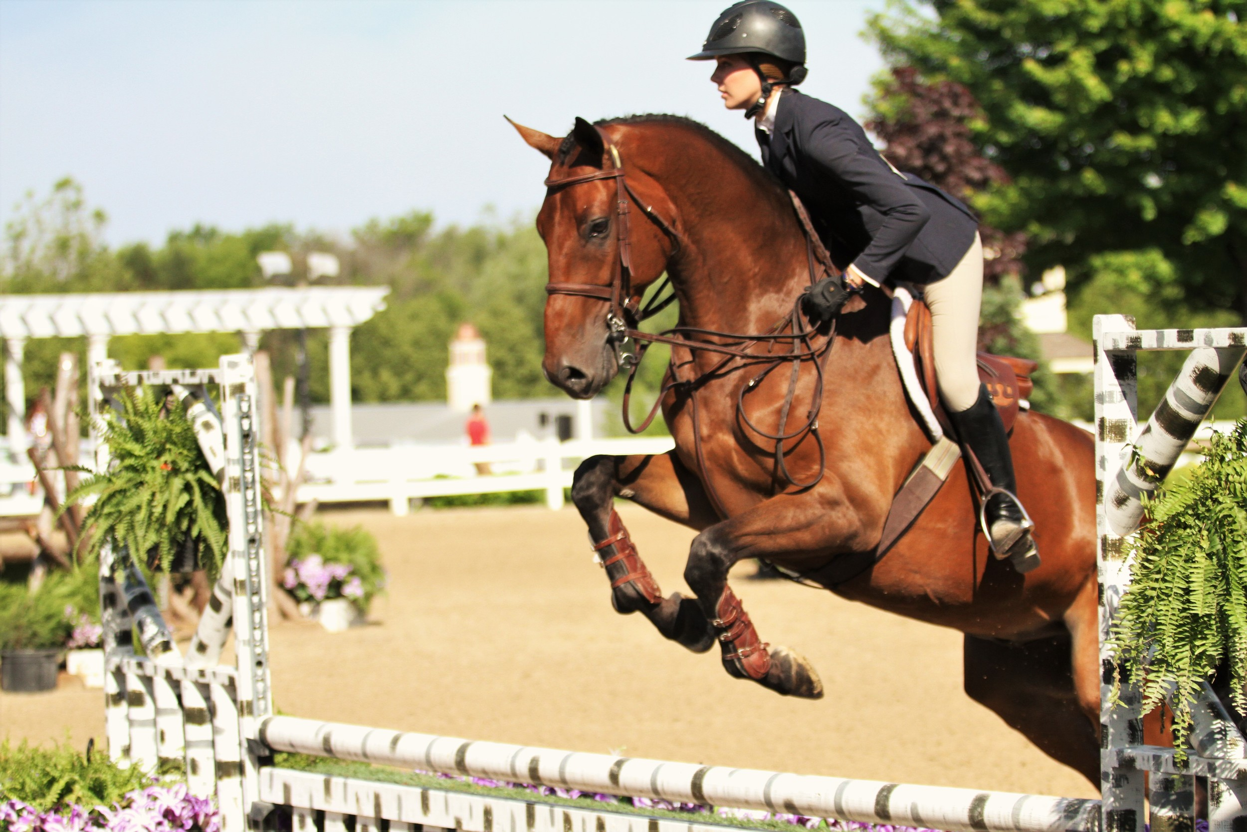 Claire McKean and Quintus Rubin     USEF/Pessoa Hunt Seat Medal    Claire McKean and Quintus Rubin, owned by North Run, topped the class to take home the USEF/Pessoa Hunt Seat Medal.