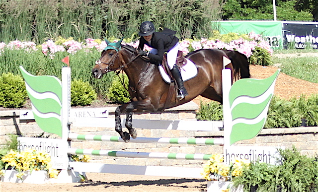 Opera, owned and ridden by Charlotte Novy   $2,500 Low Children Jumper Classic