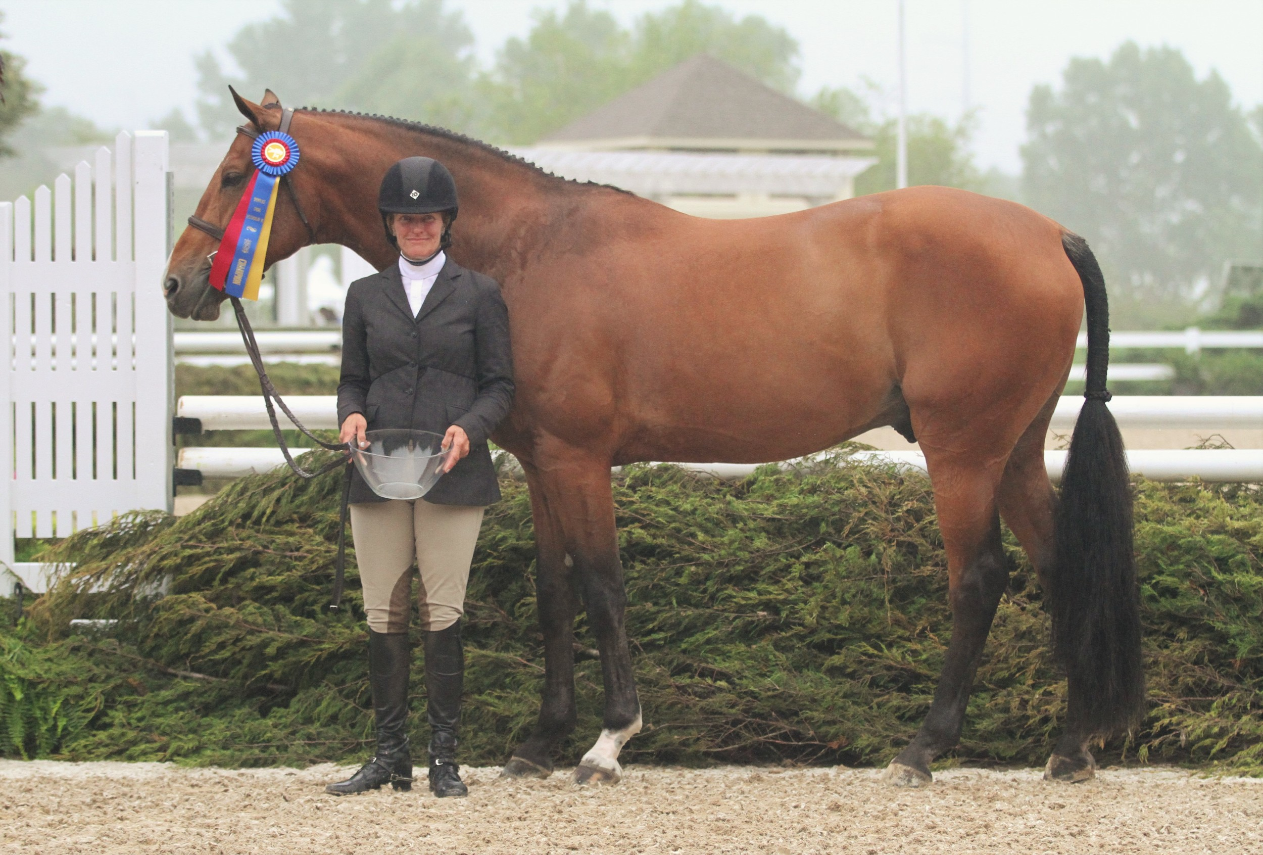 First Year Green $2,500 Open Hunter Classic Because, owned by Jane Gaston and ridden by Kelley Farmer, topped the First Year Green division and won the Open Hunter Classic.