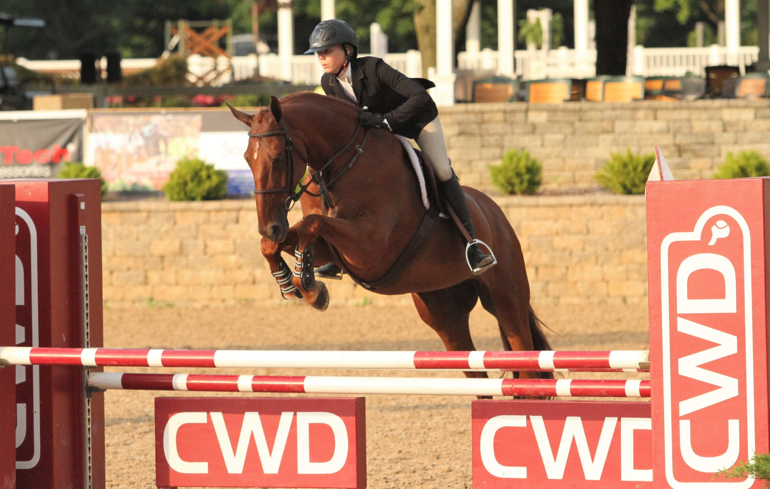 USEF Talent Search Medal Paige Matthies and Icaris Vede, owned by Dudley B Smith