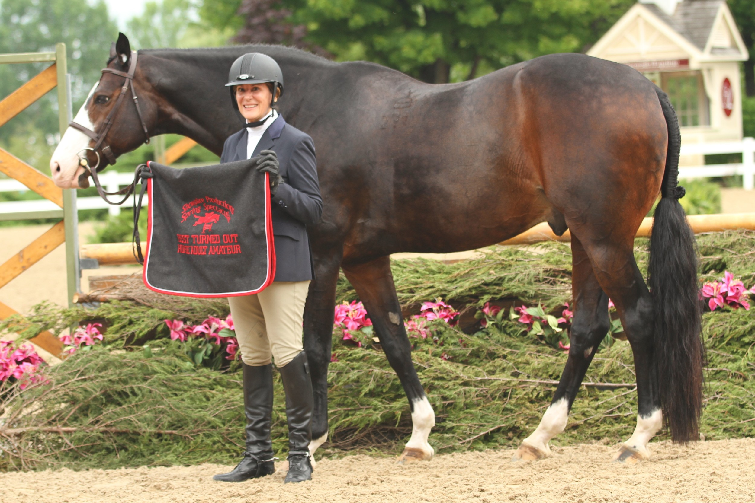 Best Turned Out Horse Adult Amateur    Playbook, owned and ridden by Beth Bailey