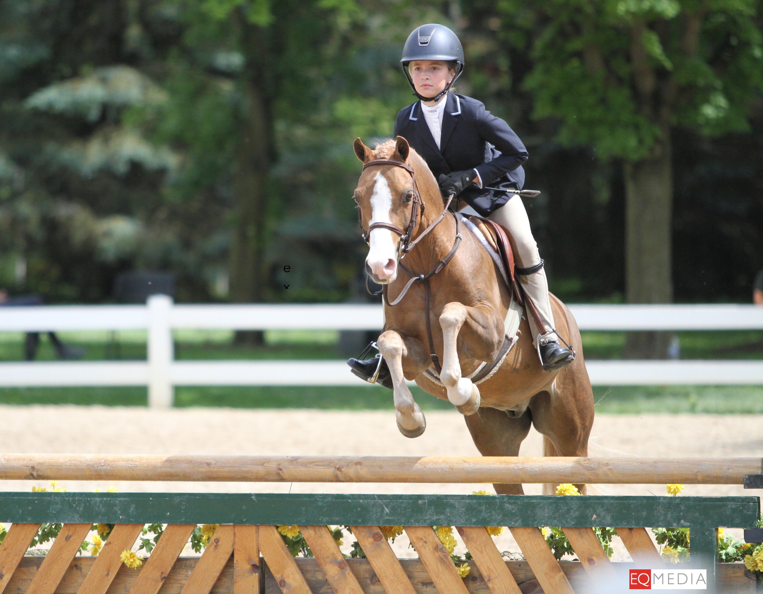 Page 6 and Chloe Watrous were champions of the Small Pony Hunters