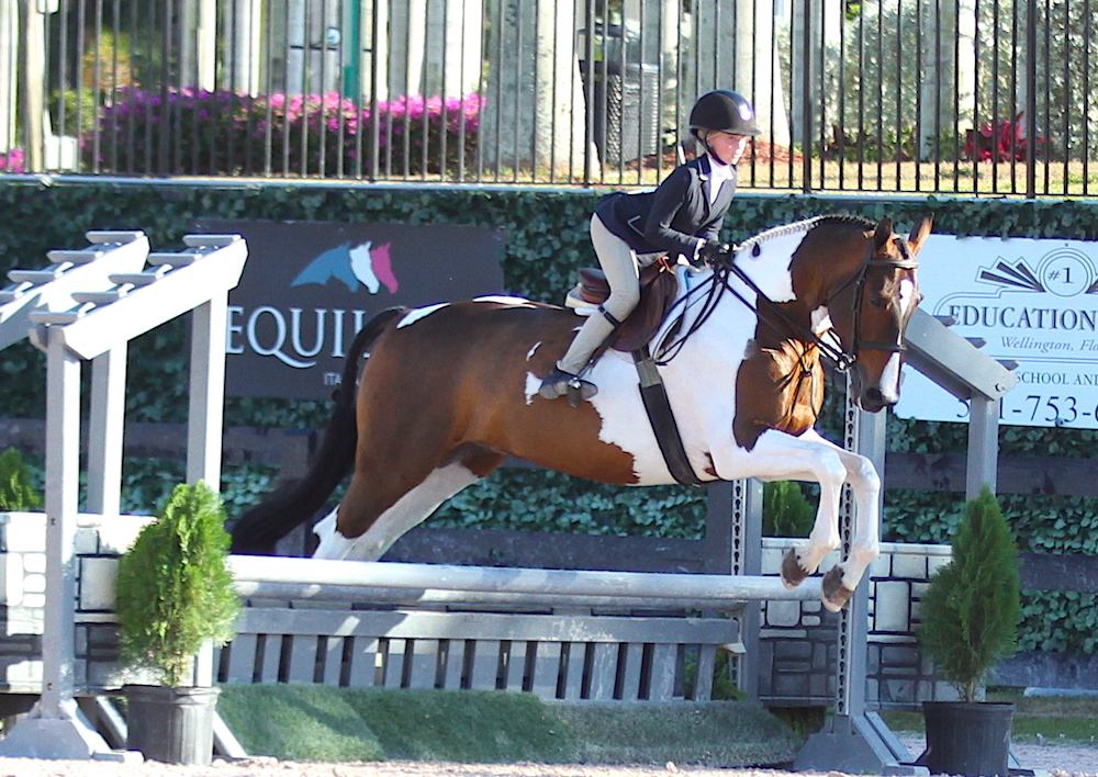 Chloe Watrous and Sunman warmed up in the Low Children's Hunters before earning their reserve championship in the Equitation 11 and Under