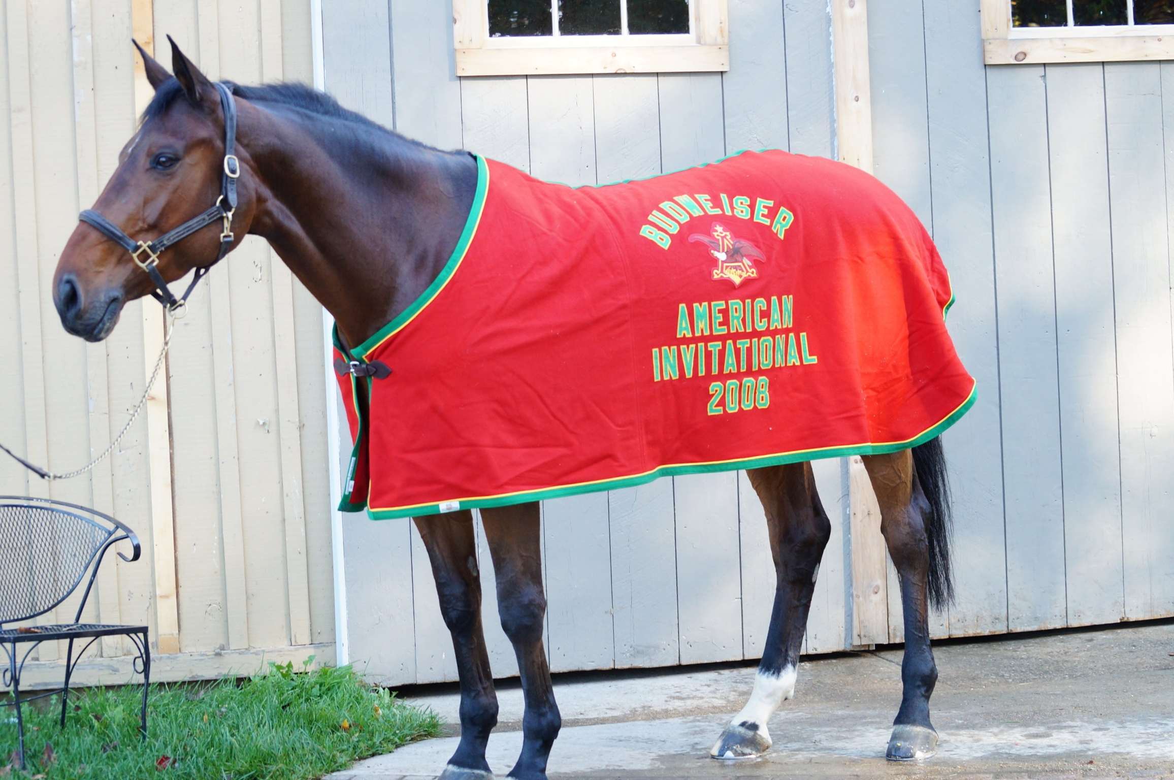 Gwen models Sapphire's American Invitational championship cooler. Photo by Kelli A. Kelliher