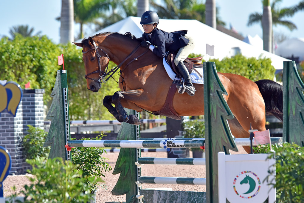 Chloe Jhin and Elmo V.D.    Bremdhoeve   . Photo by Anne Gittins Photography