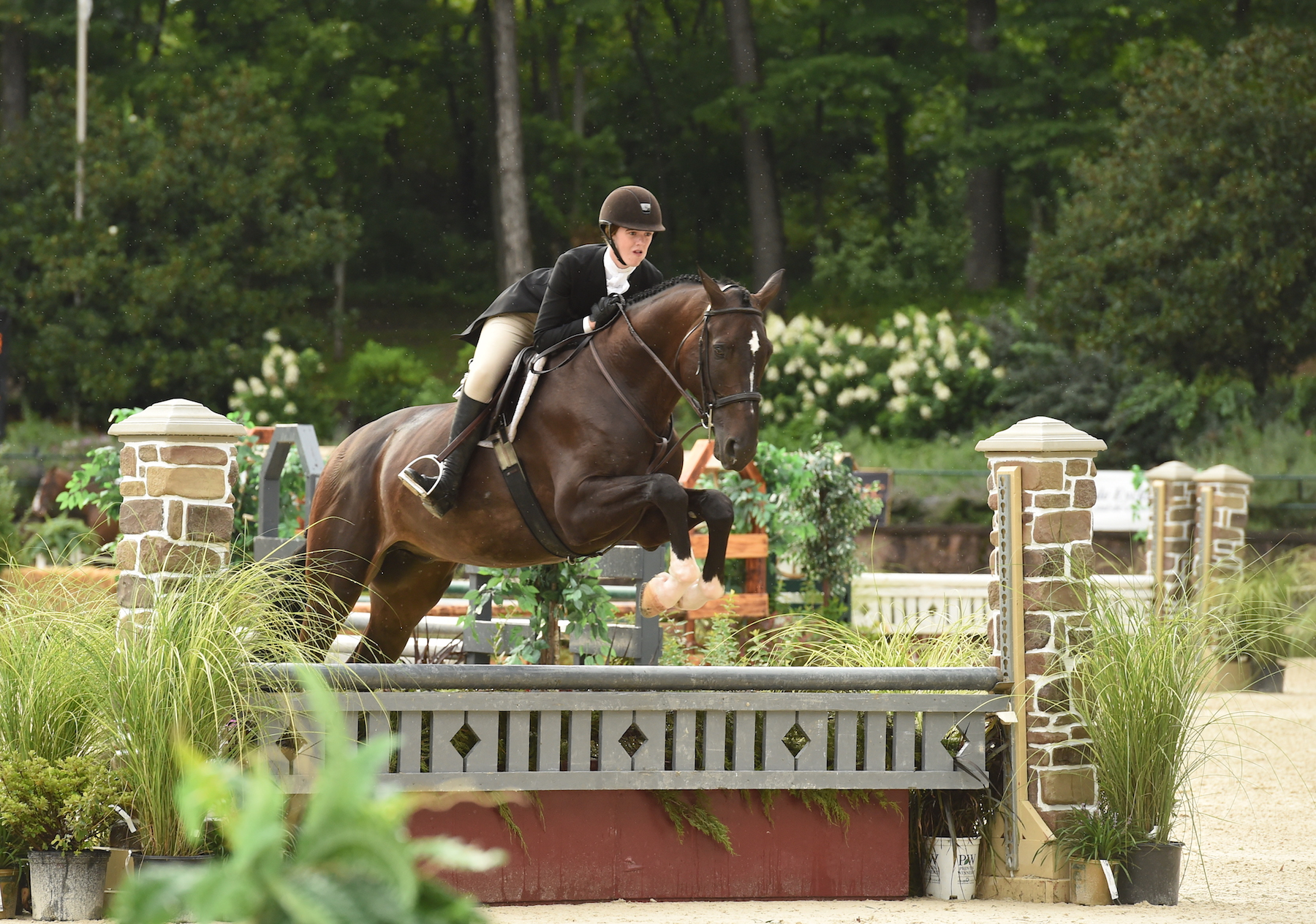 Devon Thomas and Diabolo earned third place. Photo by Anne Gittins Photography