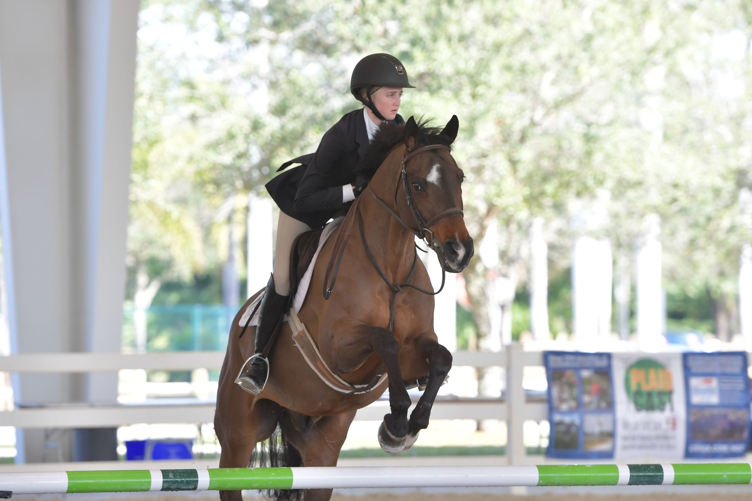 2018 CPI Florida Open Hunt Seat High Point Rider Reilly Cunningham Photo by Andrew Ryback Photography