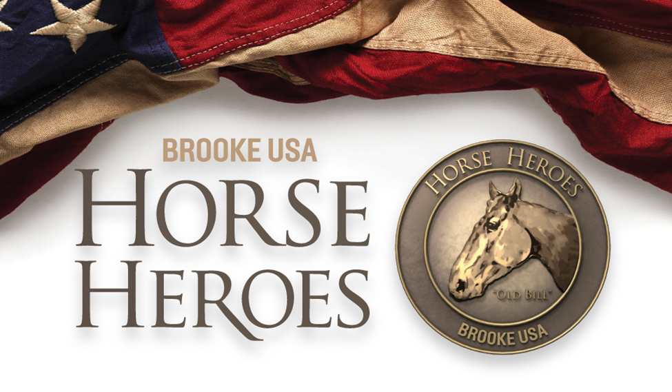 Horse_heroes_banner.png