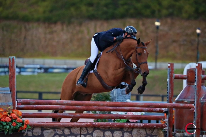 Freddie Vazquez and Exceptional won the $25,000 Hunter Spectacular during Tryon Fall 5. Photo by SportFot
