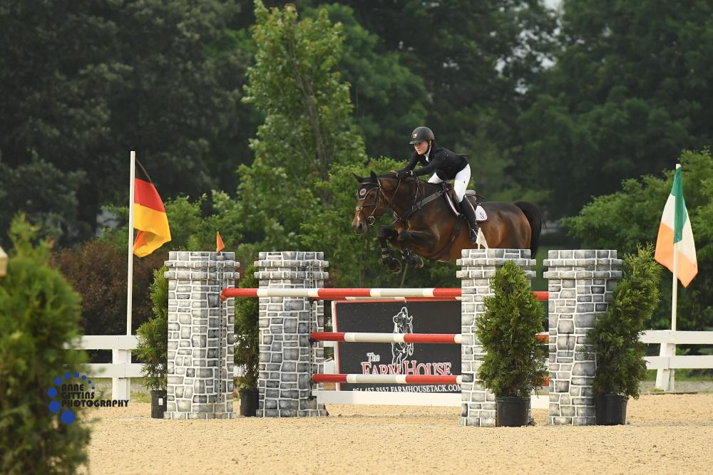Liza Finsness and Shiver won the $25,000 Rood & Riddle Equine Hospital Grand Prix. Photo by Anne Gittins Photography