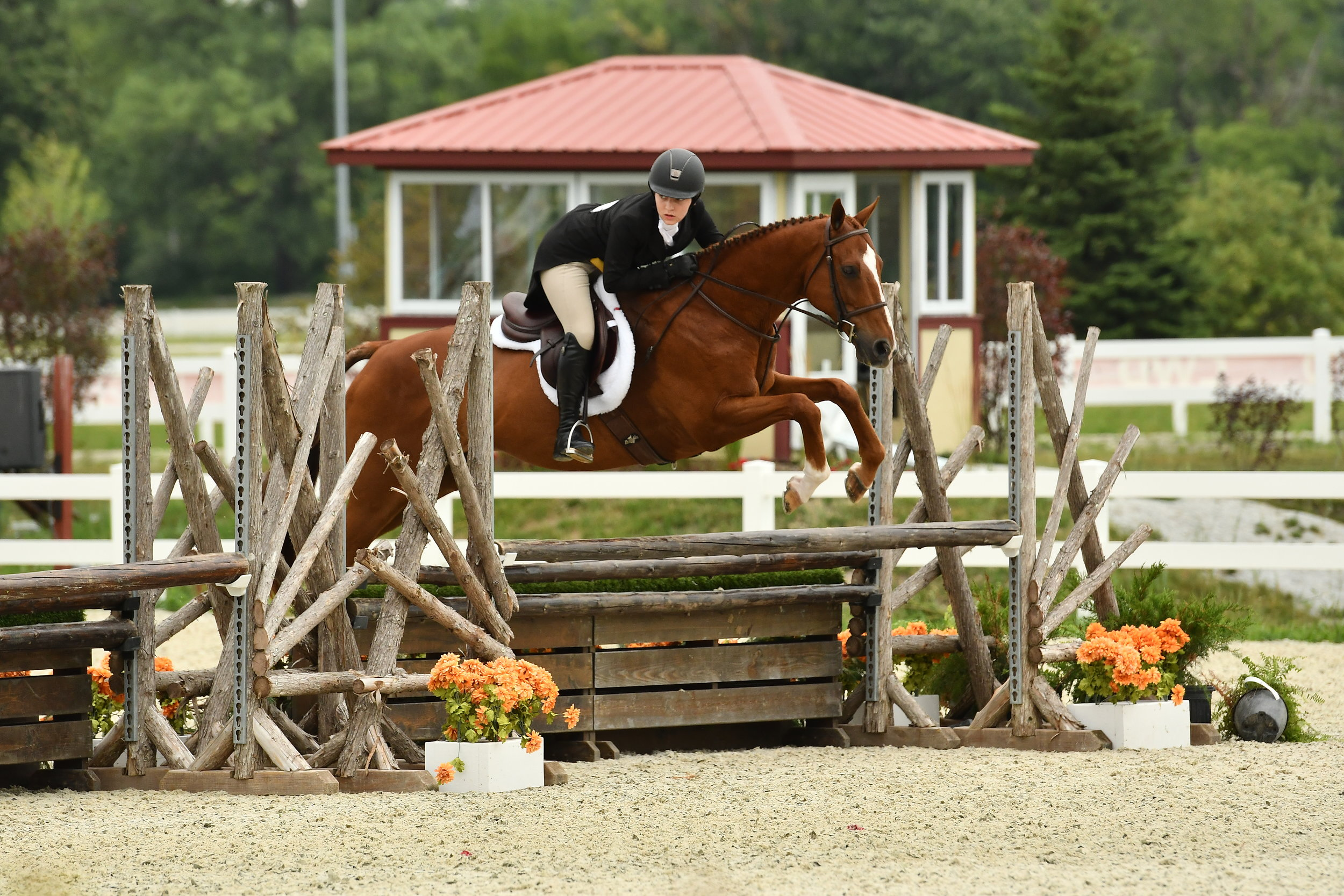 Dayna Pochron and O'Rion jumped to a victory in the Children's Hunter Individual Championship. Photo: Andrew Ryback Photography