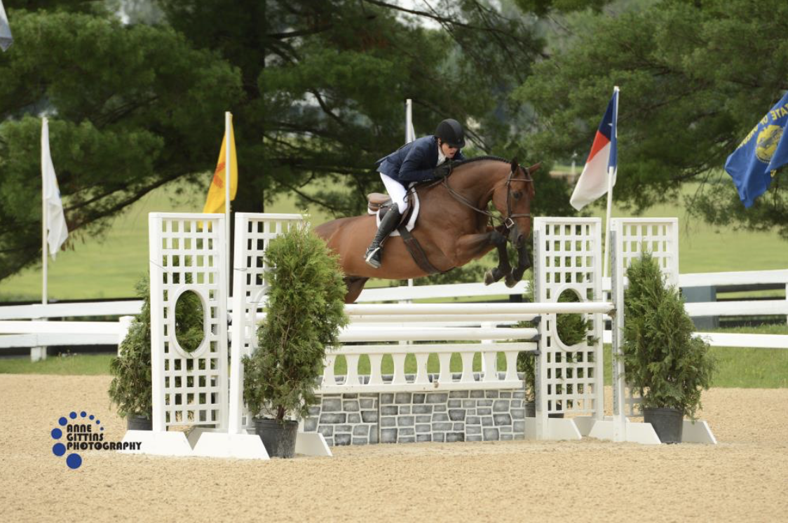 Peter Pletcher and Quintessential nabbed the win of the $30,000 USHJA International Hunter Derby. Photo by Anne Gittins Photography