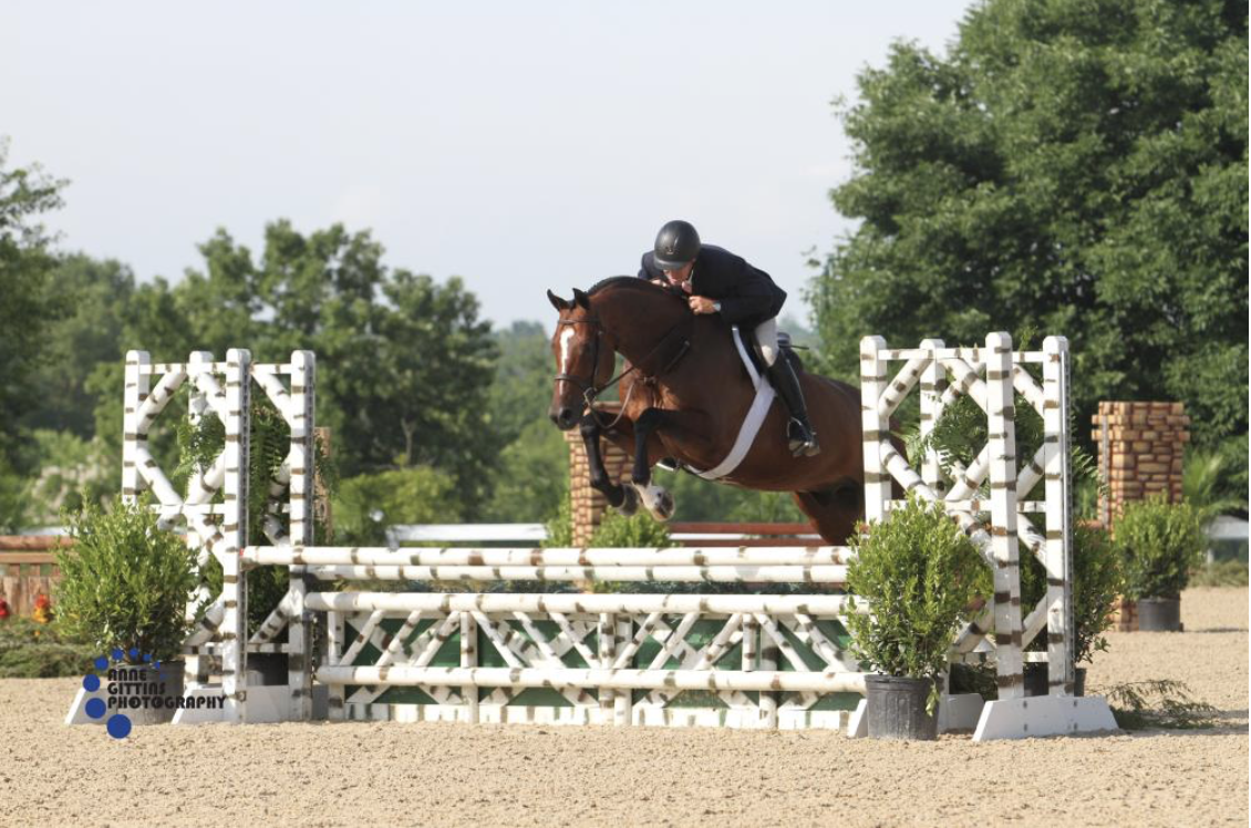 Christopher Payne and Solitude won the $10,000 Joey Darby Green Hunter Challenge. Photo by Anne Gittins Photography