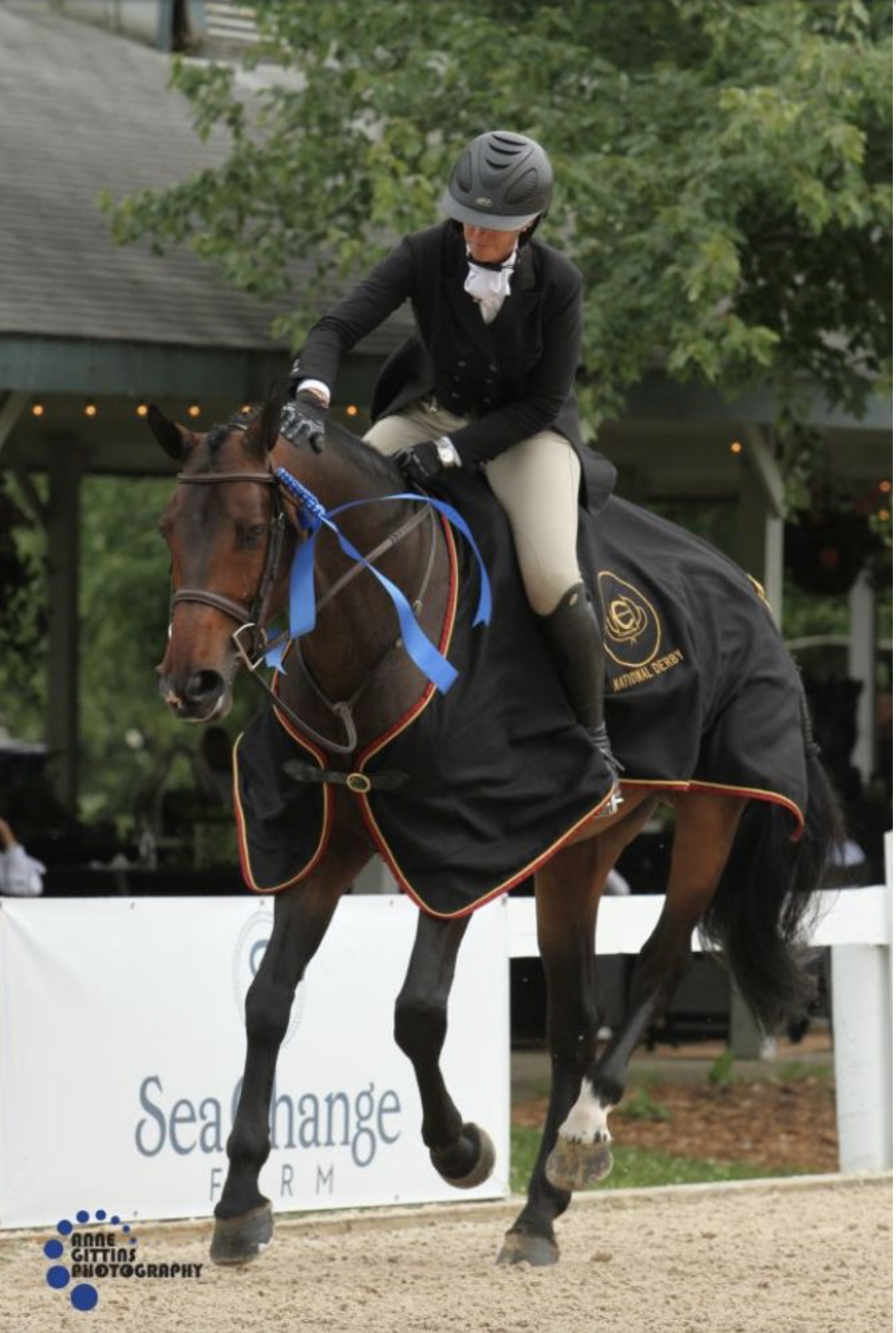 Tiffany Morrissey and Baron Z won the S10,000 USHJA National Hunter Derby Photo by Anne Gittins Photography