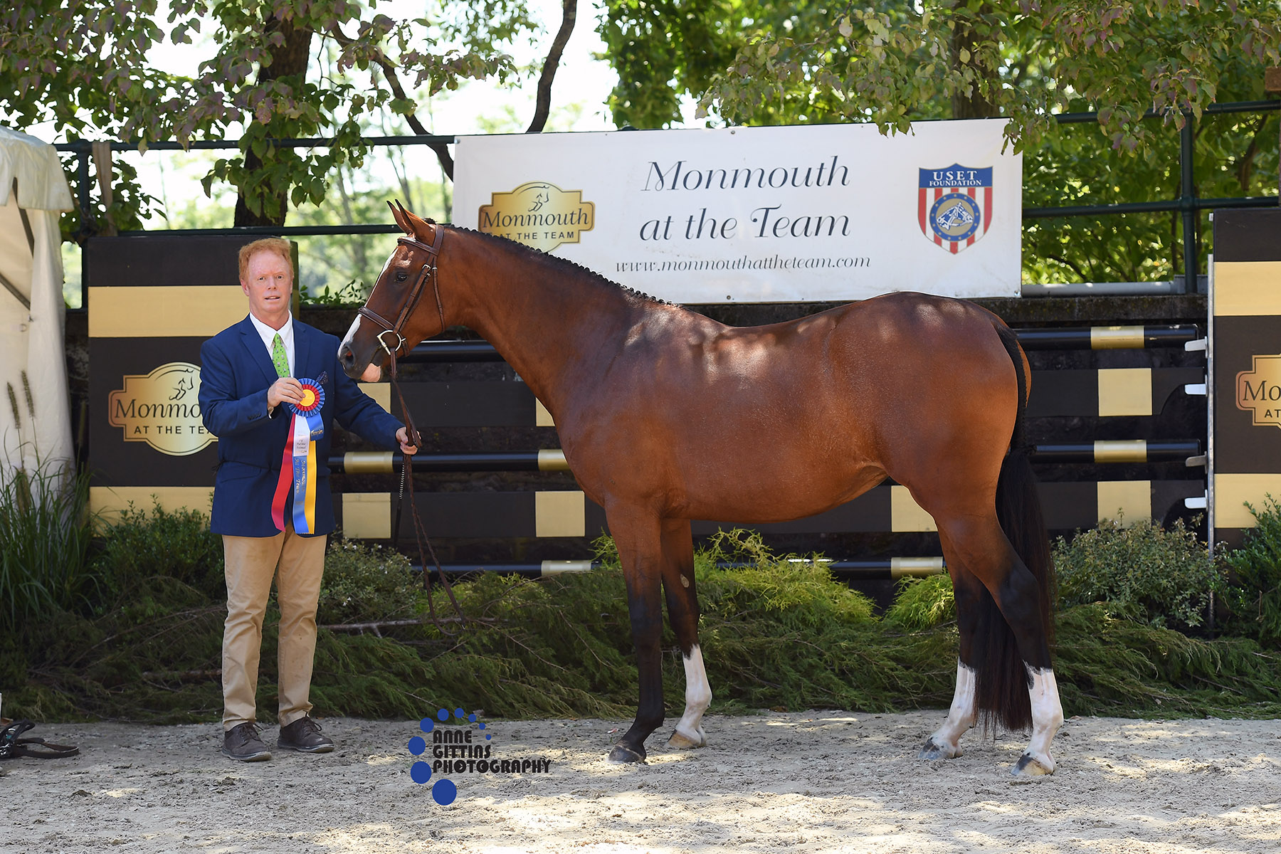Ivy Lane, owned by Janet Rizzo and handled by Jay Raach, was named Best Young Horse of the breed classes Photo by Anne Gittins Photography