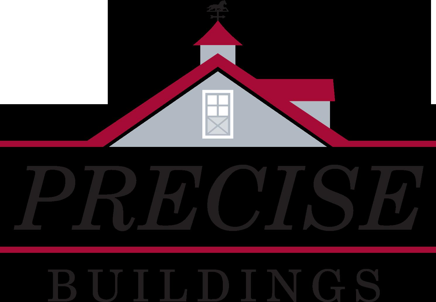 NEW_Precise_Logo_CMYK.png