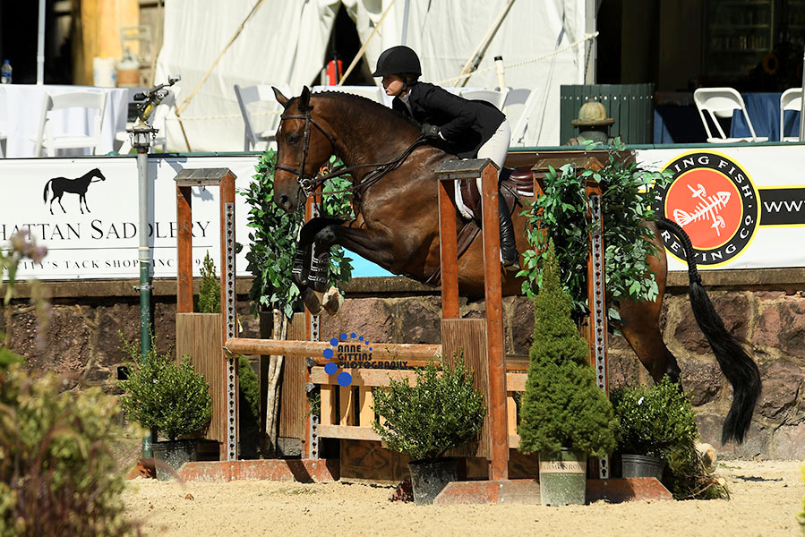 Reese Merna and with Utrillo Du Soleil cleaned up in the 3' Equitation taking the win in the THIS Children's Medal and were champions of the 3' Equitation. Photo by Anne Gittins Photography