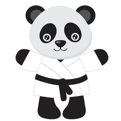panda program.jpg